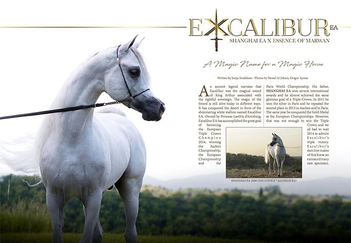 Excalibur Anteprima