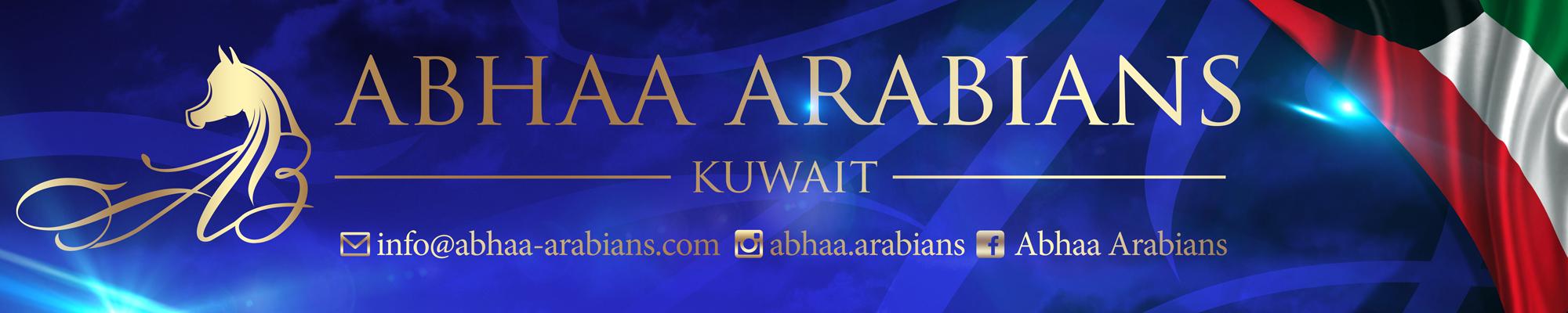 Banner-Abhaa-arabians